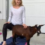 Goat Yoga & Langley Wineries Tour 10