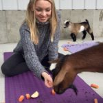 Goat Yoga & Langley Wineries Tour 12