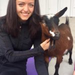 Goat Yoga & Langley Wineries Tour 5