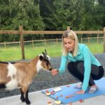 Goat Yoga & Langley Wineries Tour 6